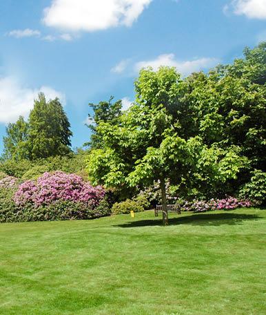 Os jardins de condomínios podem contar com zonas mais amplas que utilizem apenas alguns elementos, como árvores grandes e/ou peças decorativas, como bancos de jardins, que sejam capazes de proporcionar algum conforto ao espaço.