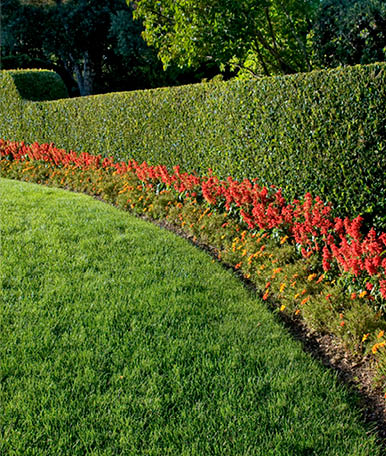 Com a utilização de divisões de espaços pode-se criar pequenas seções com aspetos diferentes em áreas amplas. Estas divisões de espaços são, normalmente, conseguidas através da utilização de arbustos ou corredores de flores e atribuem uma maior harmonia ao ambiente.