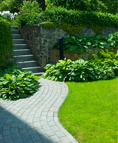 like-garden