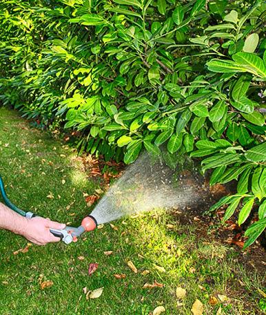 Para manter o seu jardim saudável e vivo não pode abdicar de uma rega adequada ao seu espaço. Ao utilizar a mangueira correta, vai conseguir conduzir a água desde a origem até aos emissores, na quantidade certa.